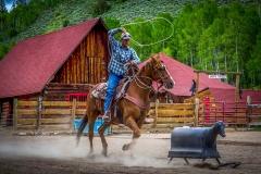 DSA Animal Kingdom 2015 Rodeo